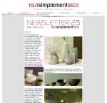 3-newsletter-tsd